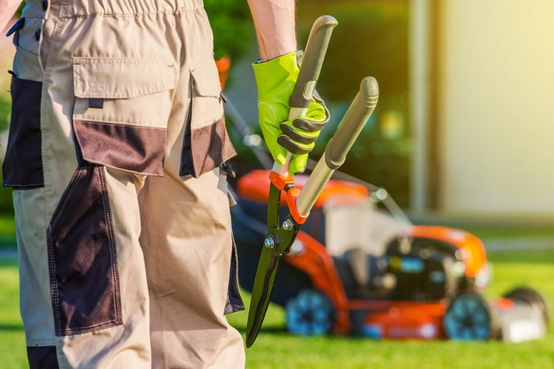 7 Reasons Why You Should Hire a Professional Landscaper