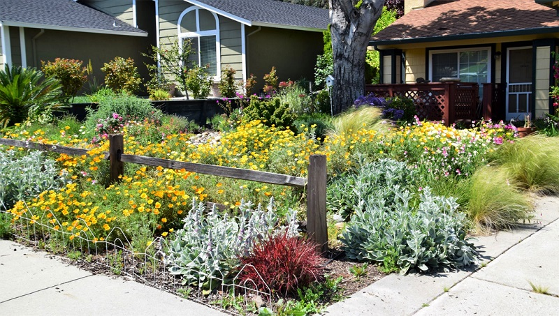 How to handle your garden in the early spring in Antioch, CA