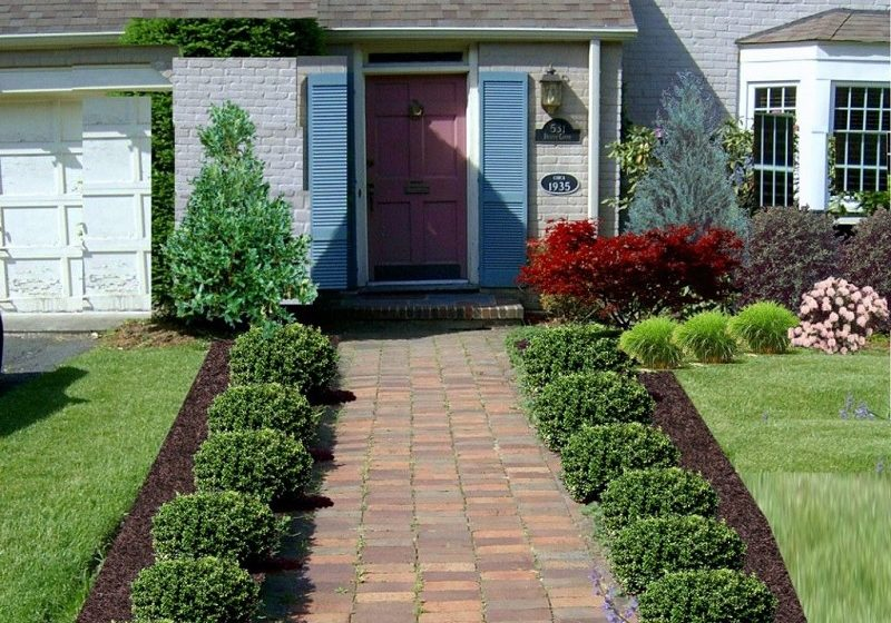 Fresh Landscaping Ideas