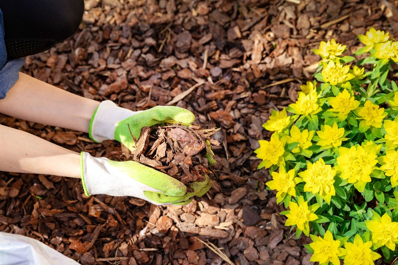 Do I need to put down mulch every year?